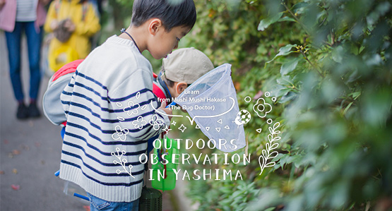 Learn from Mushi Mushi Hakase (Doctor of Bugs) in outdoor observation in Yashima.